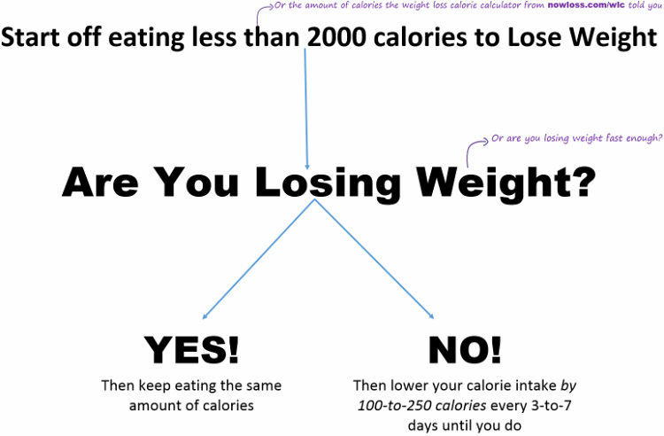 are you losing weight