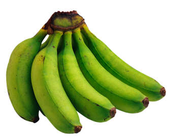 resistant starch in bananas