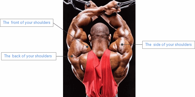 how to get bigger shoulders