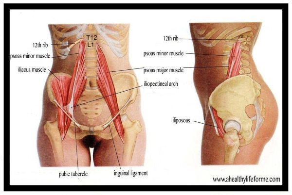 psoas cycling