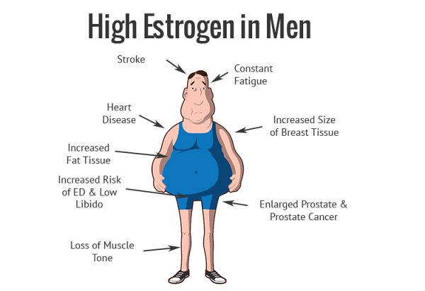 Foods that reduce estrogen levels