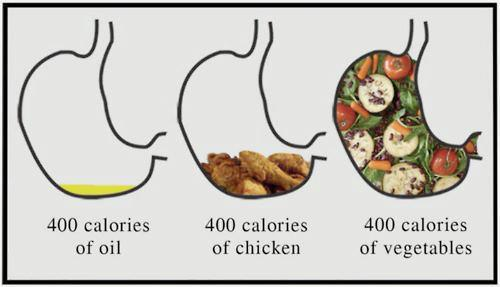 What a 1000 calorie diet looks like