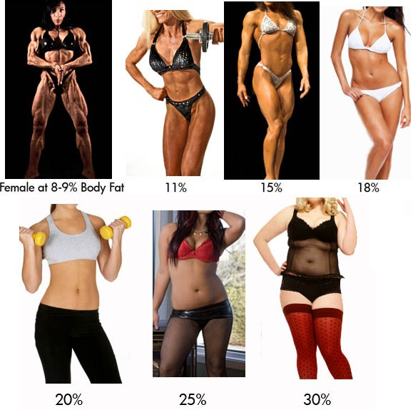 womens visual bodyfat chart